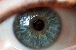 Human Eye, ©Dave Edmonds at RGBStock.com